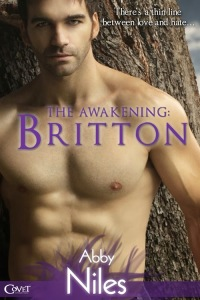 The Awakening Britton Cover