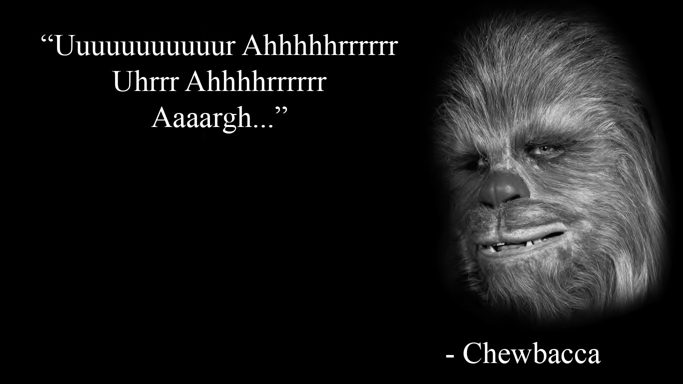 long wookie wookie in the kitchen lyrics video instructions