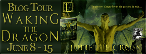 Waking the Dragon Banner 851 x 315